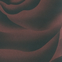 Роза Бордо, пленка ПВХ 157
