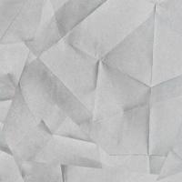 126. Оригами серое Стеновая панель 8STEPEN Россия, 4200х600х5мм