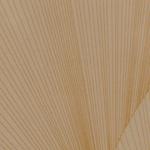 Летучая мышь ваниль глянец, пленка ПВХ 6270