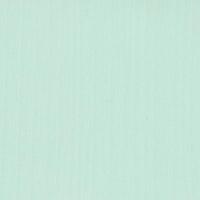 Мятный бриз, пленка ПЭТ 960-2