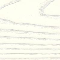 Патина ясень золото, пленка ПВХ 85