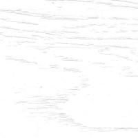 Роялвуд Белый, пленка ПВХ 5005