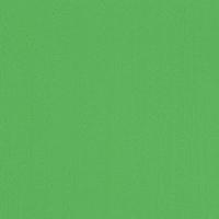Риф яблоко, пленка ПВХ 3088-612