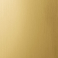 Золото матовое, декоративная планка анодированная. Алюминиевая система дверей-купе ABSOLUT DOORS SYSTEM